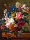 手绘鲜花图片(20张)