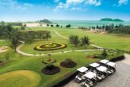 高尔夫球场景色图片(80张)