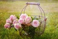 花与花篮图片(15张)