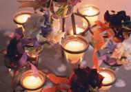 点燃的蜡烛与花朵图片(10张)