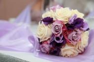 一束美丽的鲜花图片(14张)