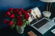 桌上的红玫瑰图片(10张)