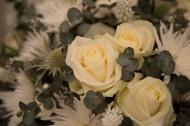 黄色玫瑰花束图片(7张)
