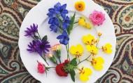 盘中鲜花图片(20张)