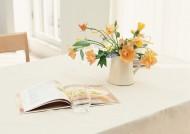 家居清新橙色插花图片(10张)