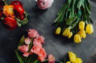 桌上的鲜花图片(12张)