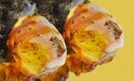 漂亮的树脂植物图片(14张)
