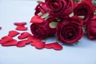 红色的玫瑰花瓣图片(10张)