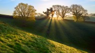 清晨第一缕阳光图片(10张)