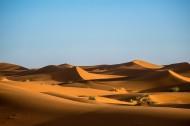 干旱的沙漠图片(15张)