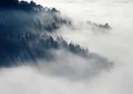 山林中的雾图片(13张)