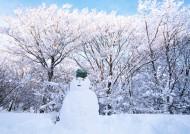 人和美丽雪景图片(7张)