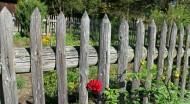 木头栅栏图片(24张)