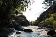 缓缓流淌的小溪图片(11张)
