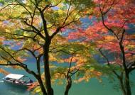 秋季红叶图片(9张)