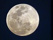 中秋圆圆的月亮图片(19张)