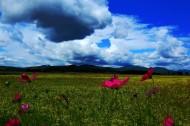 风雨前的天空乌云图片(9张)