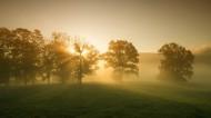 雾中风景图片(12张)