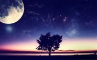 唯美明月图片(13张)