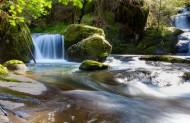 涓涓流淌的溪水图片(12张)