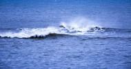 大海波浪图片(11张)