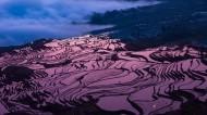 壮观的梯田风光图片(8张)