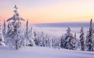 冬季秀丽雪景图片(8张)