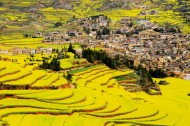 山村的田野风景图片(9张)