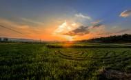 美丽的乡村风景图片(9张)