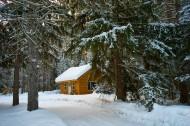 白雪覆盖的冬季图片(10张)