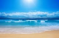 海滩图片(61张)