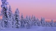 雪景图片(20张)