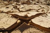 干裂的土地图片(12张)