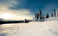 冬日雪景图片(15张)