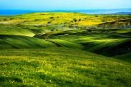 春天的草原风景图片(10张)