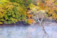 云雾缭绕风景图片(29张)