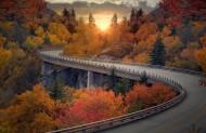 道路两旁的风景图片(15张)