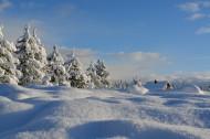 白雪皑皑的美景图片(13张)