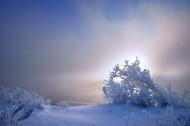 唯美雾凇风景图片(7张)